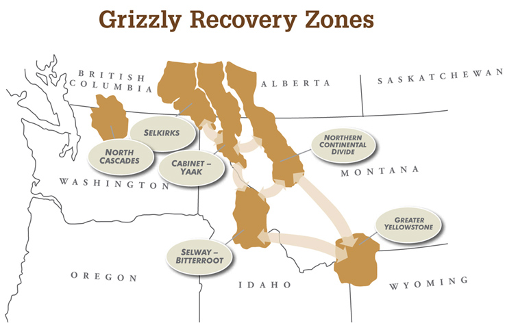 recovery zone map